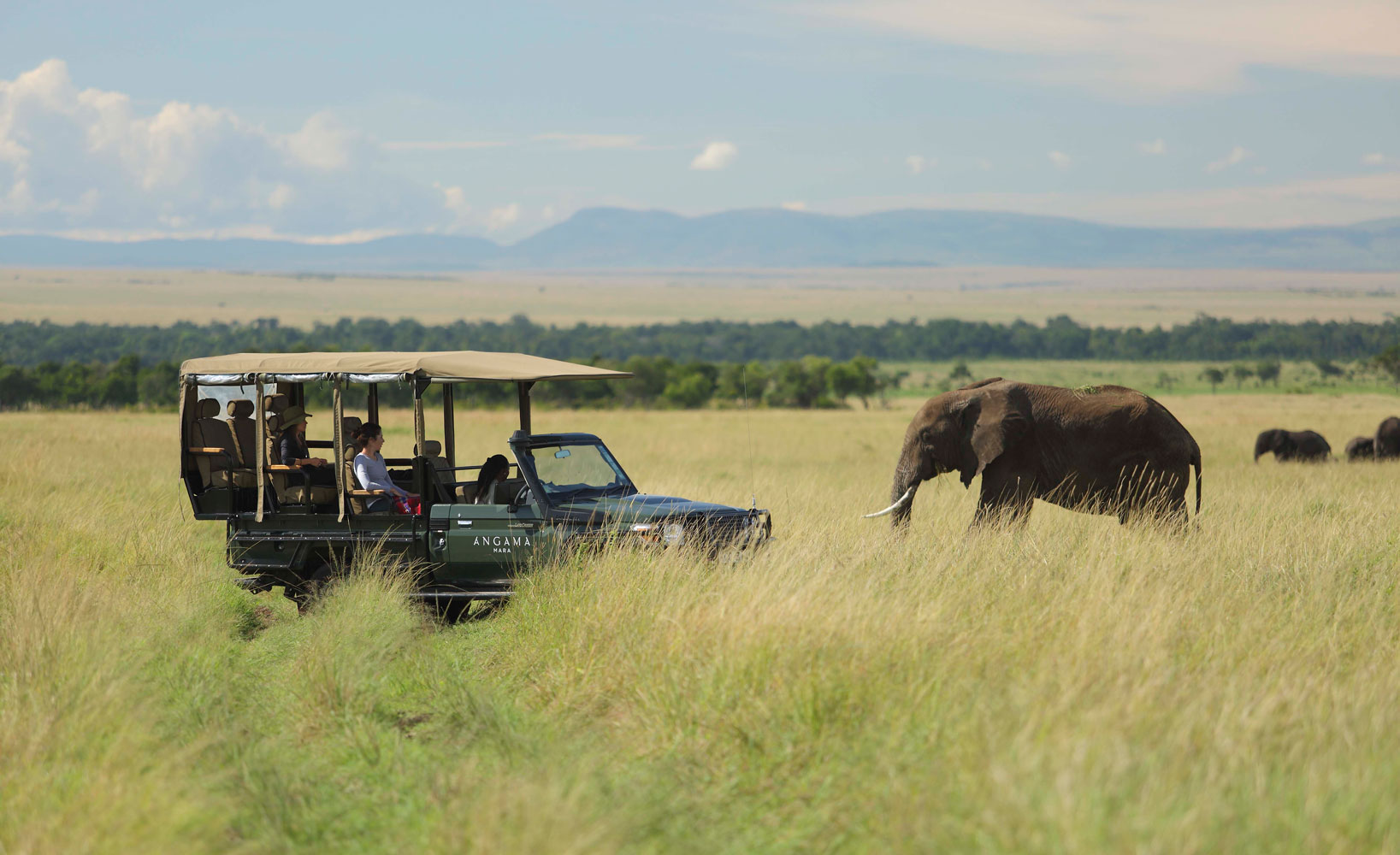 Out of Africa - Gallery Image #402